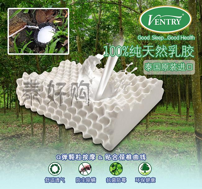 泰国Ventry乳胶枕头